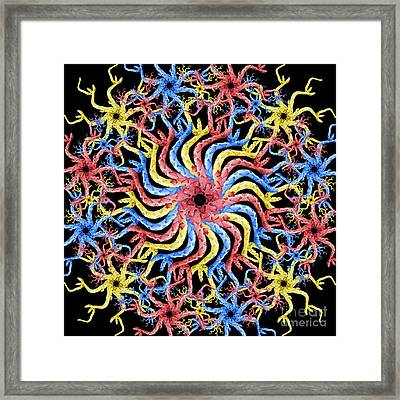Copperhead Mandala Framed Print