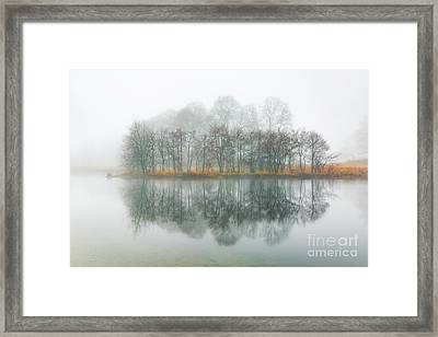 Copse Of Trees In The Mist Framed Print