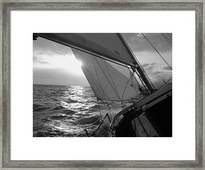 Coquette Sailing Framed Print by Dustin K Ryan