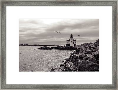 Coquille Lighthouse Oregon  Framed Print