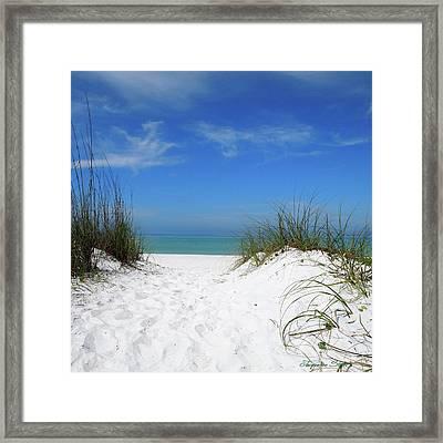 Coquina Dunes Framed Print