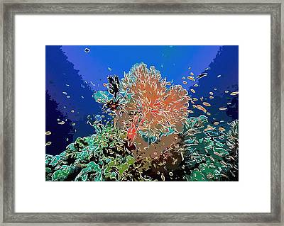 Coral And Fish In Ocean 3 Framed Print by Lanjee Chee
