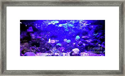 Framed Print featuring the digital art Coral Art 2 by Francesca Mackenney