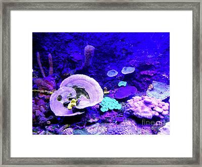 Framed Print featuring the digital art Coral Art by Francesca Mackenney