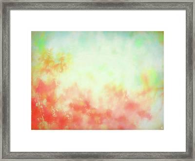 Coral Bliss Framed Print