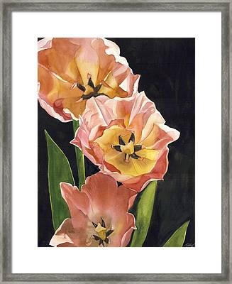 Coral In Spring Framed Print