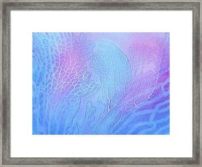 Coral Moods 5 Framed Print by Carol Cavalaris