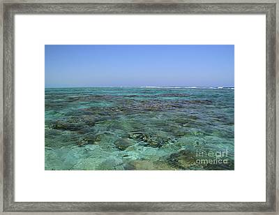 Framed Print featuring the photograph Coral Reef And Breakers by Edward R Wisell