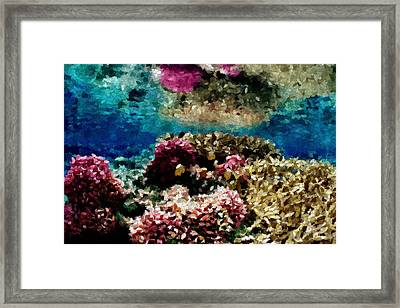 Coral Reef Framed Print by Carol Crisafi