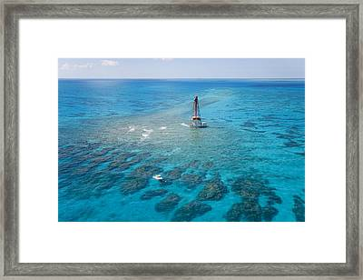 Coral Reefs Seen During Spring Low Framed Print by Mike Theiss