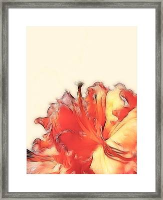 Coral Rhododendron Framed Print by Lynn Bolt