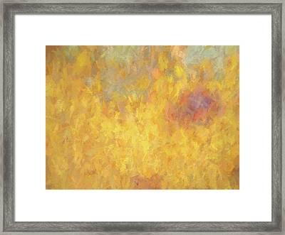 Corazon En Fuego Framed Print by David King