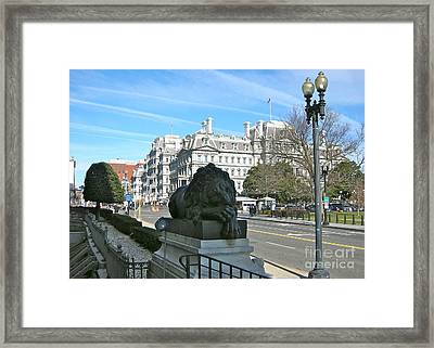 Framed Print featuring the photograph Corcoran Lion by Victoria Lakes