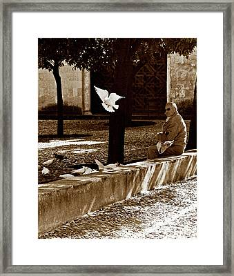 Framed Print featuring the photograph Cordoba Flight by Lorraine Devon Wilke