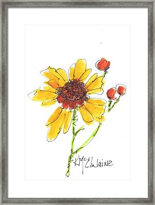 Coreopsis By Kathleen Mcelwaine Framed Print