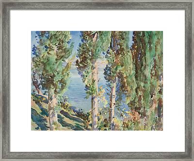 Corfu Cypresses Framed Print