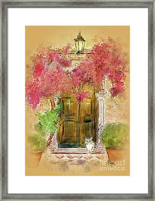 Corfu Kitty Framed Print
