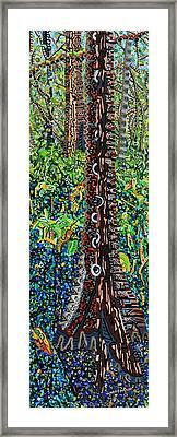 Corkscrew Swamp Sanctuary 2 Framed Print by Micah Mullen