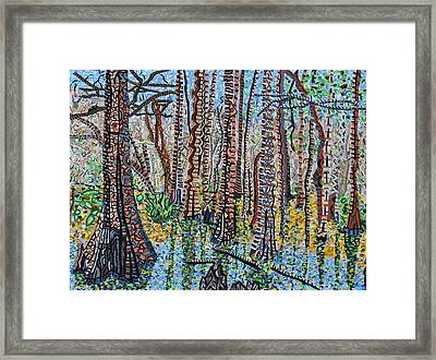 Corkscrew Swamp Sanctuary Framed Print by Micah Mullen
