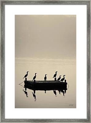 Cormorants And Dock Taunton River No. 2 Framed Print