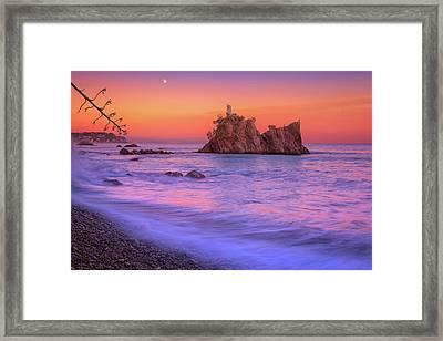 Cormorants Rock Framed Print