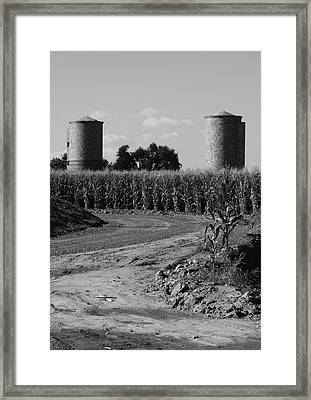 Corn And Silos Framed Print by Troy Montemayor