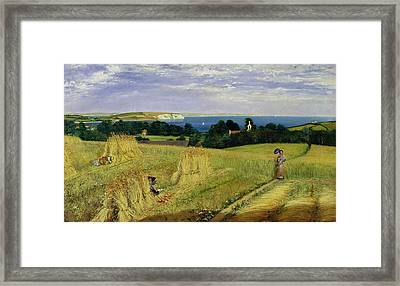 Corn Field In The Isle Of Wight Framed Print by Richard Burchett
