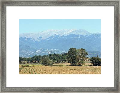 Corn Field With Terminillo IIi Framed Print