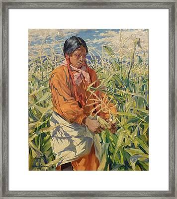 Corn Picker 1915 Framed Print