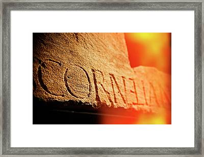 Framed Print featuring the photograph Cornelian by Michael Hope