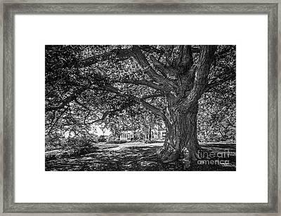 Cornell College Landscape Framed Print