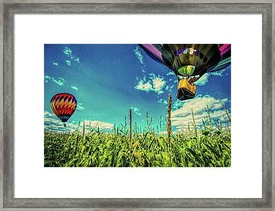 Cornfield View Hot Air Balloons Framed Print by Bob Orsillo