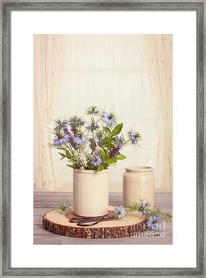 Cornflowers In Ceramic Pots Framed Print by Amanda Elwell