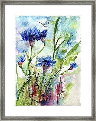 Cornflowers Korn Blumen Watercolor Painting Framed Print by Ginette Callaway