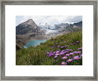 Corno Gries, Switzerland Framed Print