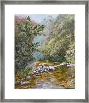 Coromandel Creek Framed Print