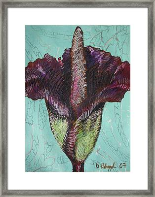 Corpse Flower Framed Print by Dodd Holsapple