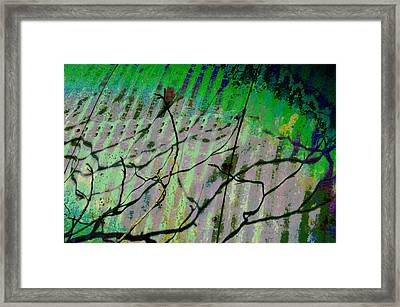 Corregated Shadows Framed Print by Jan Amiss Photography