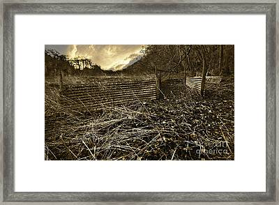 Corrugated Tin Pen Framed Print by Meirion Matthias