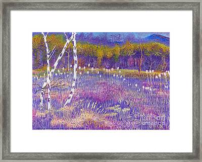 Cors Caron Bulrushes With Purple Grasses Framed Print by Edward McNaught-Davis