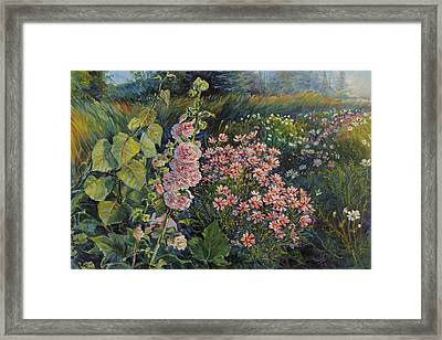 Cosmos And Hollyhocks Framed Print