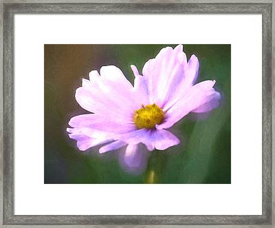 Cosmos Haze Framed Print by Sharon Lisa Clarke
