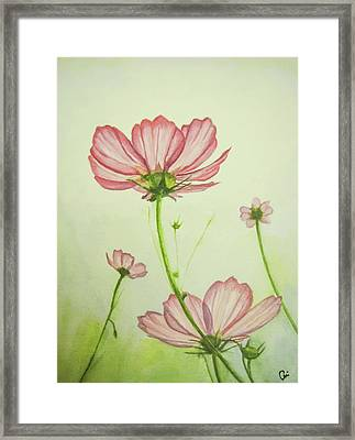 Cosmos Way Framed Print
