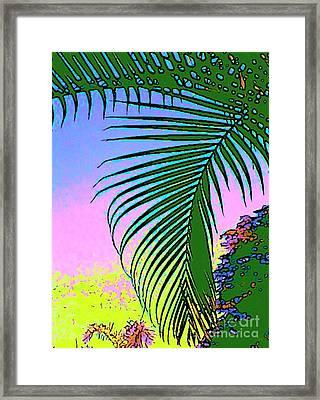 Costa Rica Palm Framed Print by Lisa Dunn