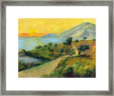 Costa Rica Sunset Framed Print by Randy Sprout
