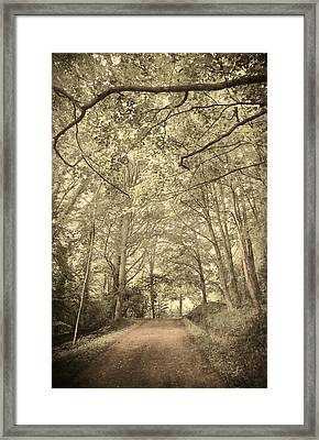 Cosy Path Framed Print by Svetlana Sewell