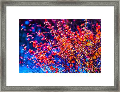 Framed Print featuring the photograph Cotoneaster In Winter by Alexander Senin
