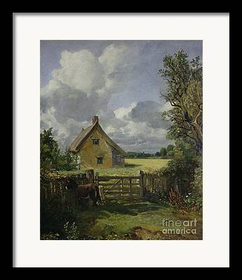 Cottage In A Cornfield Framed Prints