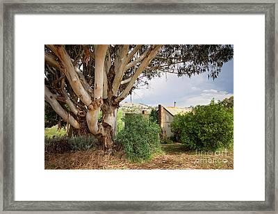 Cottage In The Hills Framed Print