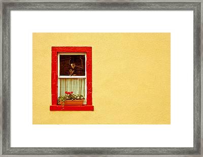 Cottage Window Framed Print by Tom Gowanlock